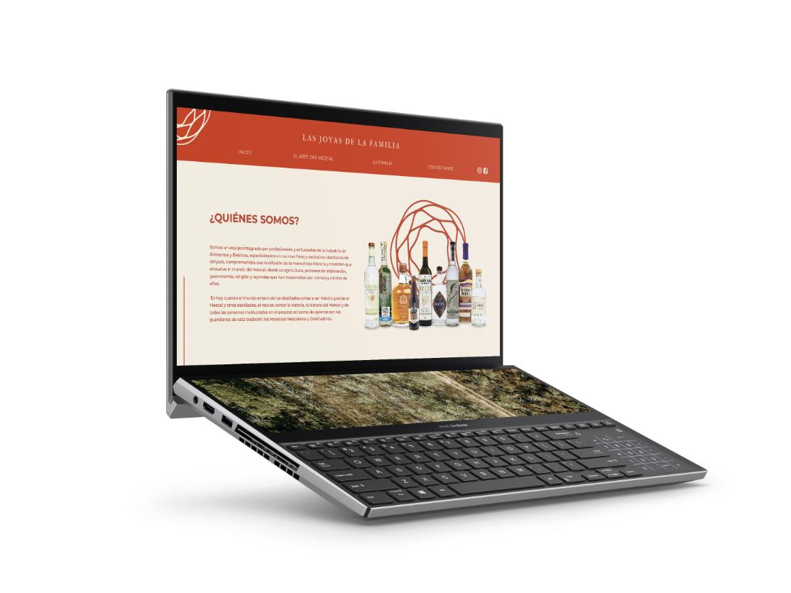 desarrollo de sitio web joyas de la familia